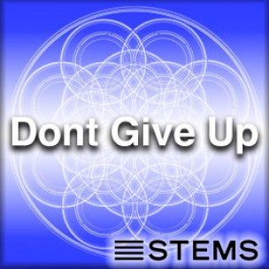 Audio + Midi + Presets: Don't Give Up STEMS