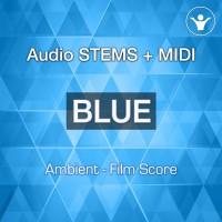 Audio Stems | MIDI | Presets | Classical / Neo Classical